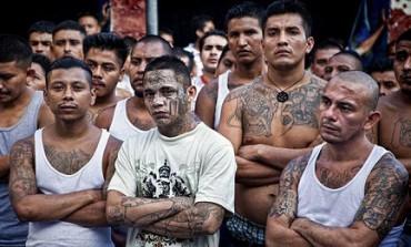 PELLE CHE PARLA. Il linguaggio dei tatuaggi nelle bande giovanili dell'America Centrale