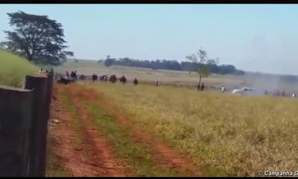 Il momento dell'ultimo attacco. La loro frequenza è aumentata da quando l'amministrazione uscente di Dilma Rousseff ha riconosciuto un vasto territorio alla tribù.