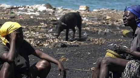 HAITI. IL FALLIMENTO AGRICOLO DI UN PAESE AGRICOLO. Il più povero paese del continente americano copre solo il 30 per cento del proprio fabbisogno alimentare