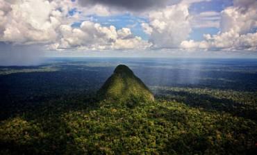 BUONE NOTIZIE DAL FRONTE DELLA LOTTA PER LA VITA. Compagnia petrolifera si ritira dal territorio di diverse tribù incontattate nell'Amazzonia peruviana