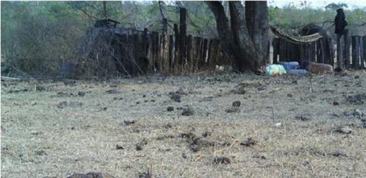 BRASILE. STRAGE DI CONTADINI NEL MATO GROSSO. Almeno 10 lavoratori agricoli sono stati assaliti e assassinati da un gruppo di incappucciati