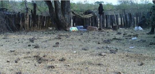 IL BRASILE DELLE LOTTE PER LA TERRA. Un rapporto della Commissione Pastorale per la Terra denuncia un forte aumento della violenza nel 2016 e prevede un 2017 peggiore