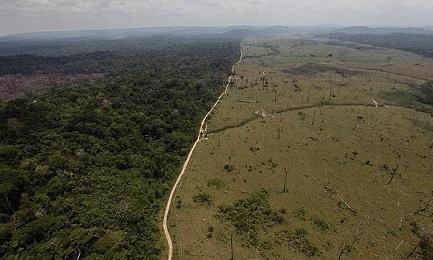 LA DISTRUZIONE DELL'AMAZZONIA (E NOSTRA). La deforestazione è in aumento. Solo nel 2016 distrutta un'area equivalente a sette volte la città di Rio de Janeiro.