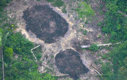 CERCATORI D'ORO CONTRO INDIOS DELL'AMAZZONIA. Prove dell'attacco? si chiede Survival International davanti ad alcune case comunitarie di indios bruciate e avvistate