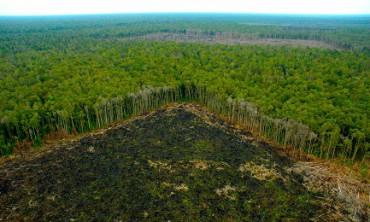 UN SINODO CHE RIGUARDA TUTTI. É quello sull'Amazzonia che si terrà a Roma in ottobre 2019. Si delineano nuove strade per evangelizzare i popoli indigeni