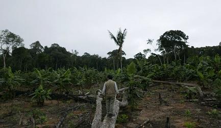 Demetrio Pacheco, un ambientalista peruviano più volte minacciato per difendere il suo territorio dal disboscamento illegale (Foto Jack Lo vía Mongabay Latam)