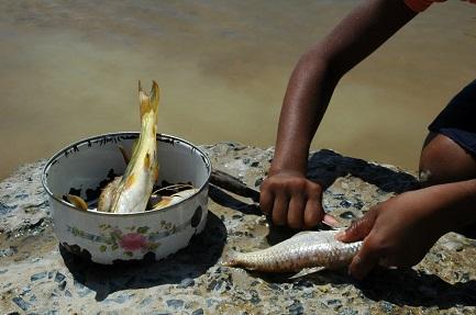 Il ritorno della fame in Brasile (Foto João Zinclar)